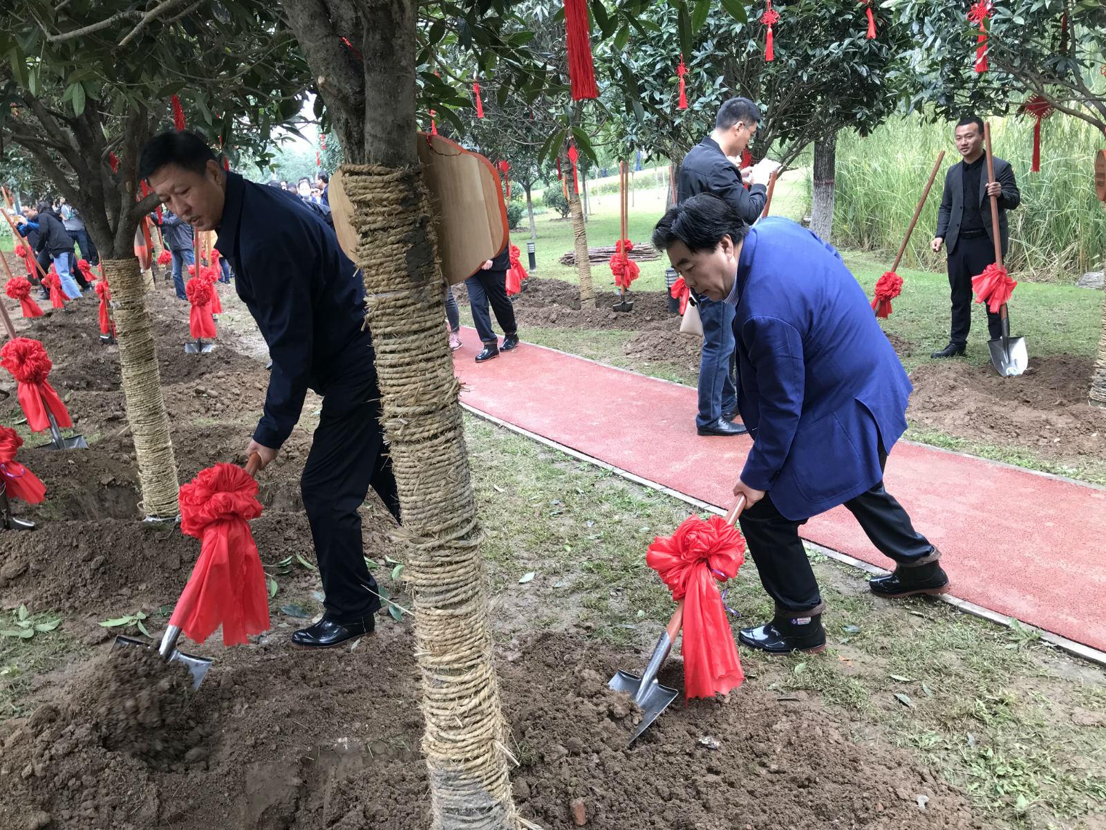 种棵桂花树更加多,植下贡献林
